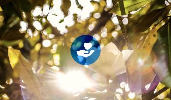 Key #1 Success in Healthcare Philanthropy Series—Major Gift Focus